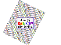 Pre-Order Rainbow After the Storm Bow